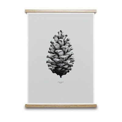 Paper Collective Nature 1:1 Pine Cone Grey