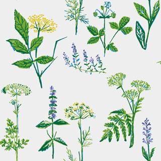 Boråstapeter Koksväxter Wallpaper