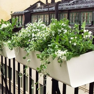 SMD Design Jorda Window Box - Urban Garden