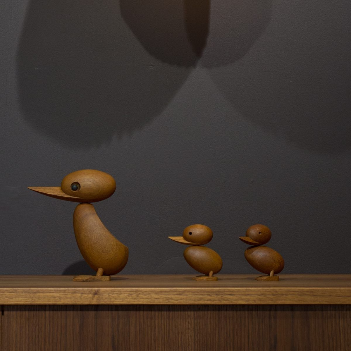 Architect Made Duckling